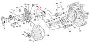 Camshaft Bearing Retention Plate